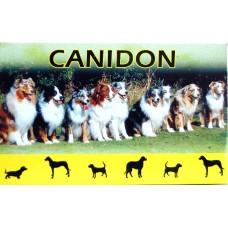 50 Tablets Canidon dog wormer (DRONTAL PLUS alternative)